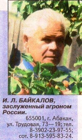 Достижения и. Л. Байкалова в книге рекордов россии