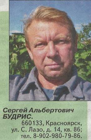 Итоги сезона в красноярском саду сергея будриса, возможности освоения плодовых культур и винограда
