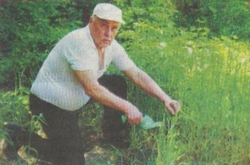 Как обеспечить сохранность рассады на своём огороде