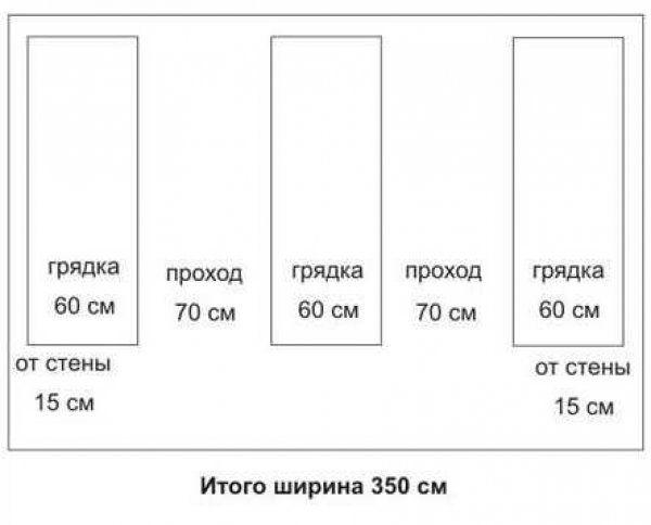 Оптимальные размеры теплицы