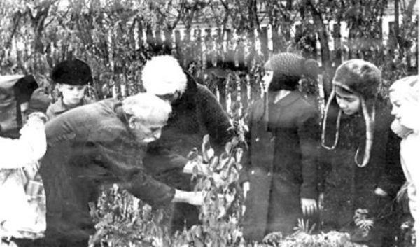 Мухтуйский садовод-агроном павел осин первым в якутии посадил саженцы яблони