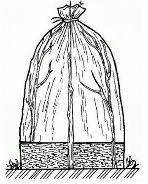 Мини-теплица «вигвам»