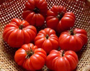 Отличный сорт томата «американский ребристый»: полное описание помидоров с фото, особенности, достоинства и недостатки кустов и плодов