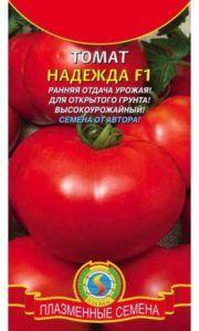 Перспективный гибрид для открытого грунта — томат «надежда»: описание сорта, фото