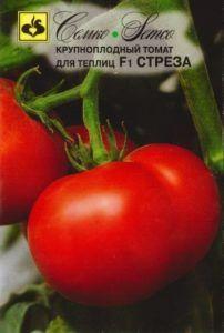 Перспективный гибрид российской селекции — томат «стреза»