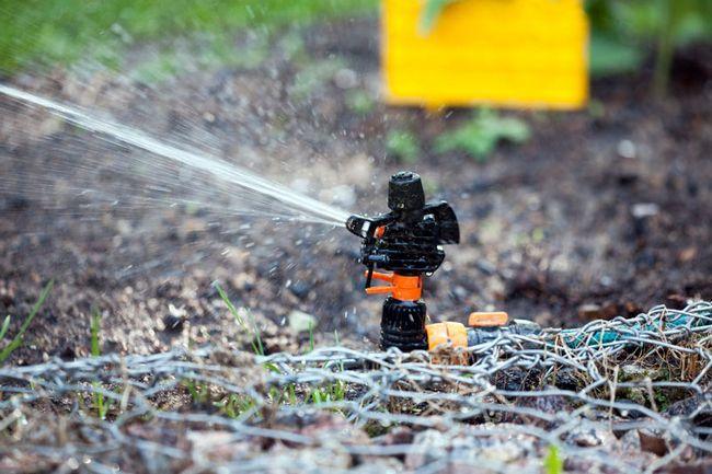 как сделать полив на огороде