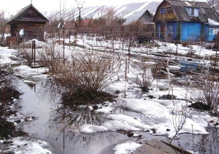Последствия весеннего паводка в саду