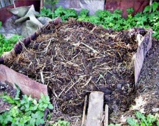 Секреты получения высоких урожаев посредством применения методик органического природного земледелия