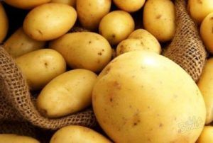 Вкусный и красивый сорт картофеля «капризе»: описание сорта, характеристика