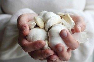 Выбираем из лучшего, как хранить чеснок на зиму в домашних условиях: в холодильнике или в банках?